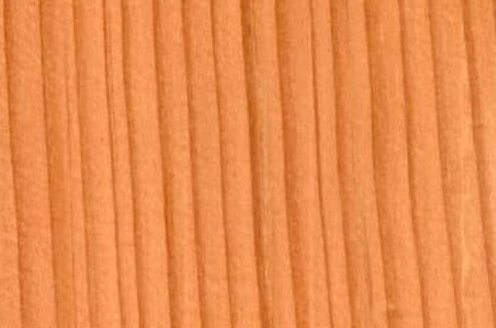 this image shows douglas fir flooring