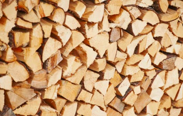 this image shows how douglas fir softwood differs from hardwood